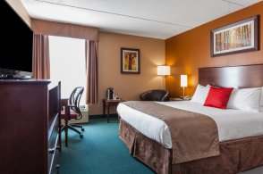 1-king-bed-suite